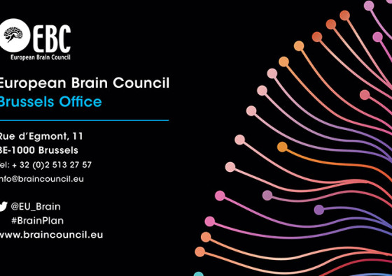 EBC-Second-Academy-of-National-Brain-Councils-2016